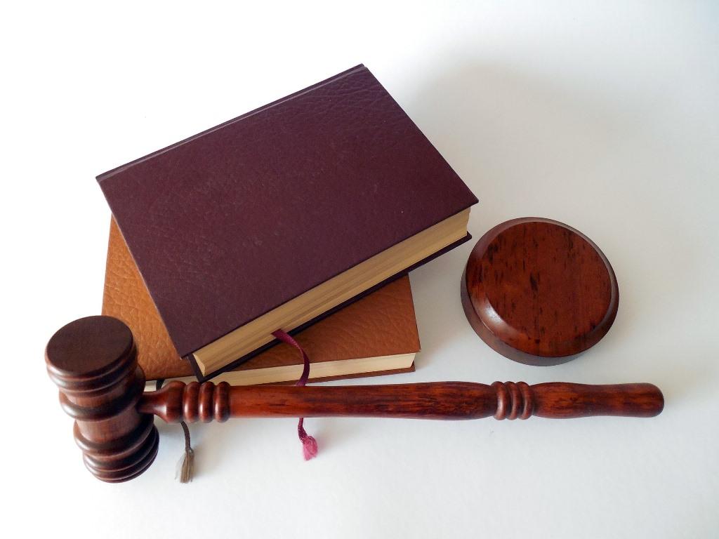 Dreptul cetateanului la initiativa legislativa
